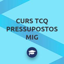 Curs TCQ Pressupostos Mig