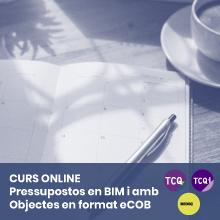 Curs TCQ-TCQi-BEDEC-eCOB