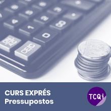 Curs Exprés TCQi Pressupostos professional